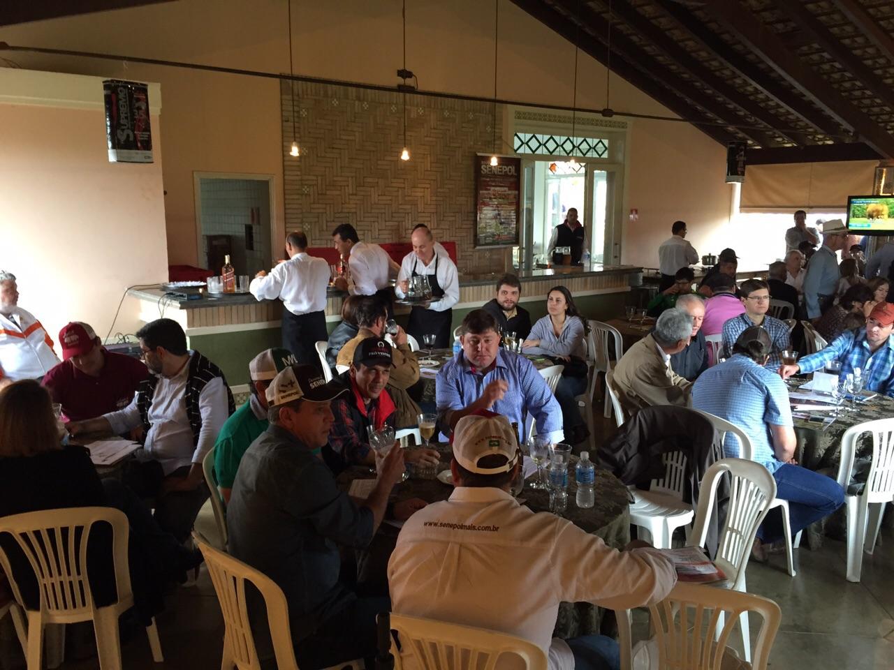05_3 Leilão virtual com carne real de Senepol em Araçatuba (1)
