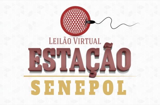 01-LogoEstacaoSenepol-1024x675