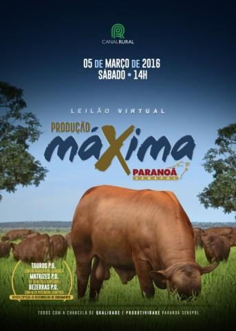 LeilaoProducaoMaxima_2016-1-549x768
