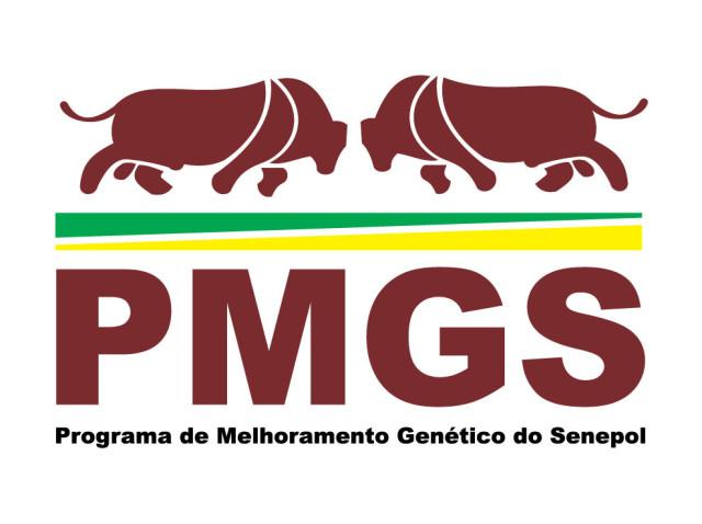 Logotipo PMGS